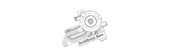 Artificial Eye