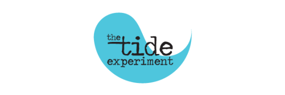 The TIDE Experiment